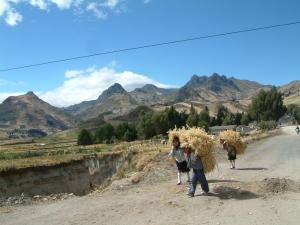 Séjours en Equateur