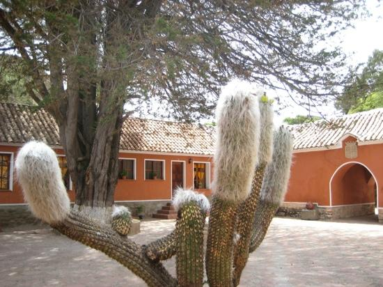 Hacienda Cayara