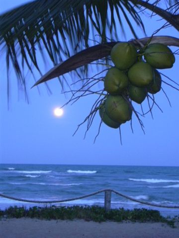 full moon at Praia do Cassange