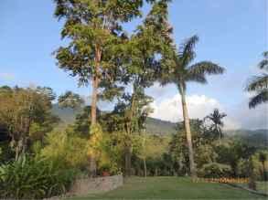 Honduras 3a