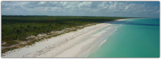 isla hobox 1
