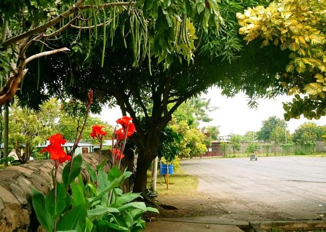 Nicaragua (8)