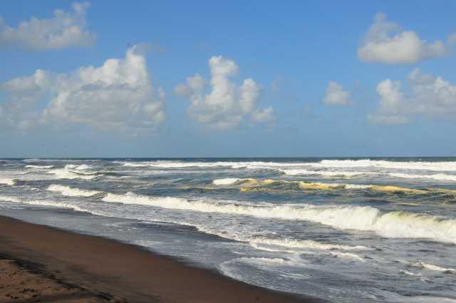 Voyage au costa Rica - album photos (2)
