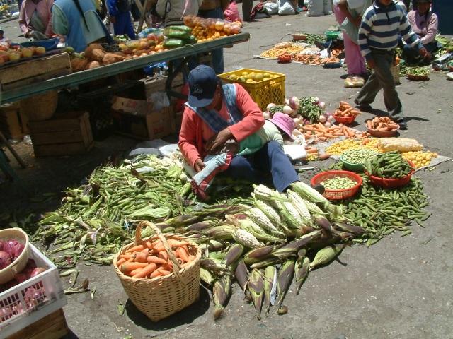 Voyage en Equateur - album photos (7)
